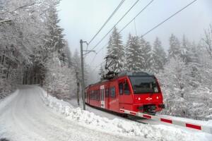 210115_Uetlibergbahn-Schnee-Unterbruch
